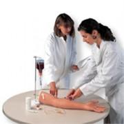braccio simulatore per iniezioni endovenose