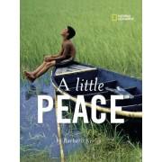 A Little Peace by Barbara Kerley