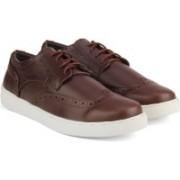 Carlton London -Mr.CL Sneakers(Burgundy)