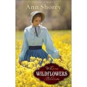 Where Wildflowers Bloom by Ann Shorey
