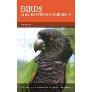 The Birds of the Eastern Caribbean by Peter Evans