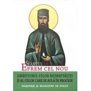 Sfantul Efrem cel Nou - Izbavitorul celor nedreptatiti si al celor care se afla in procese