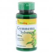 GYMNEMA Sylvestre Tabletten 90 Stück