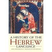A History of the Hebrew Language by Angel Saenz-Badillos