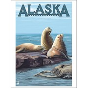 Alaska Sea Lions (Playing Card Deck 52 Card Poker Size With Jokers)