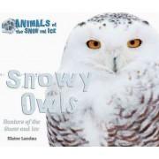 Snowy Owls by Elaine Landau