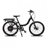 Mountain e-Bike Prodeco Stride R500