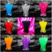 11 Large 5 Gram Packs. One Of Each Color Jelly Bead Z Water Beads Gel Soil