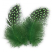 Magideal 50PCS Dyeing Guinea Hen Feather Feathers 5-10cm Pink Apple Green