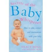 Secrets Of The Baby Whisperer by Melinda Blau