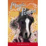 Magic Ponies: A Twinkle of Hooves by Sue Bentley