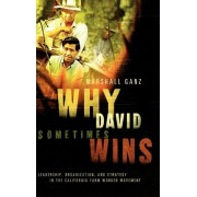 Why David Sometimes Wins by Marshall Ganz