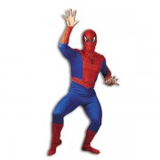 Spiderman Fancy Dress Costume - Large