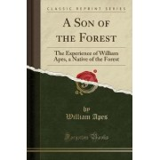 A Son of the Forest by William Apes