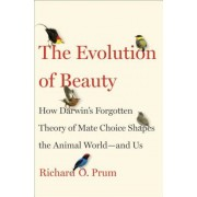 The Evolution of Beauty: How Darwin's Forgotten Theory of Mate Choice Shapes the Animal World - And Us, Hardcover
