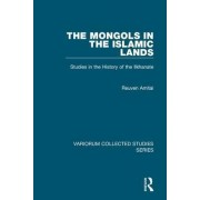 The Mongols in the Islamic Lands by Reuven Amitai