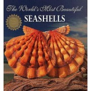 The World's Most Beautiful Seashells by Leonard Hill