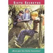 Bien Por Los Siete Secretos by Enid Blyton