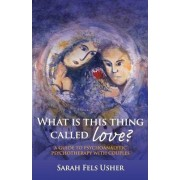 What is This Thing Called Love? by Sarah Fels Usher