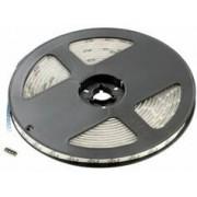 Lunartec Bande à LED pour intérieur LC-500N, multicolore, 5 m