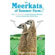 The Meerkats of Summer Farm by Jayne Collier
