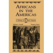 Africans in the Americas by L. Michael Conniff