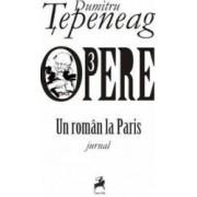 Opere 3 Un roman la Paris - Dumitru Tepeneag