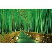 Sagano 23-546 - bosque de bamb? Lit 2016 obra maestra ultraligero del rompecabezas (jap?n importaciones)