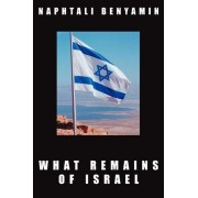 What Remains of Israel by Naphtali Benyamin