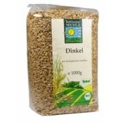 Cereale bio - spelt