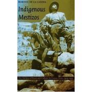 Indigenous Mestizos by Marisol de La Cadena