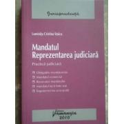Mandatul Reprezentarea Judiciara - Luminita Cristina Stoica