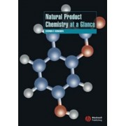 Natural Product Chemistry at a Glance by Stephen P. Stanforth