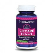 Cicoare Extract Herbagetica 30cps