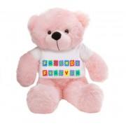 Pink 2 feet Big Teddy Bear wearing a Friends Forever T-shirt