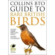 Collins BTO Guide to Rare British Birds by Paul Sterry
