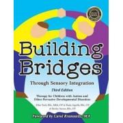 Building Bridges Through Sensory Integration by Paula Aquilla