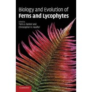Biology and Evolution of Ferns and Lycophytes by Tom A. Ranker