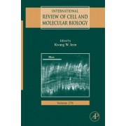 International Review of Cell and Molecular Biology: Vol. 278 by Kwang W. Jeon