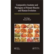 Comparative Anatomy and Phylogeny of Primate Muscles and Human Evolution by Rui Diogo