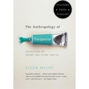 The Anthropology of Turquoise by Meloy Ellen
