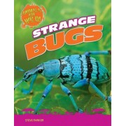 Strange Bugs