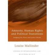 Amnesty, Human Rights and Political Transitions by Louise Mallinder