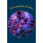 My Little Book of Colors by Lisa Manfrede Smith