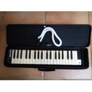 Melodica Touches Piano