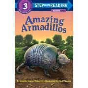 Amazing Armadillos by Jennifer McKerley