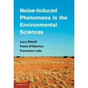 Noise-Induced Phenomena in the Environmental Sciences by Luca Ridolfi