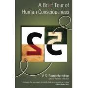 A Brief Tour of Human Consciousness by V. Ramachandran