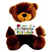Brown 2 feet Big Teddy Bear wearing a colorful Friends Forever T-shirt