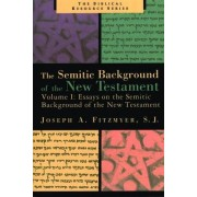 Essays on the Semitic Background of the New Testament by Joseph A Fitzmyer